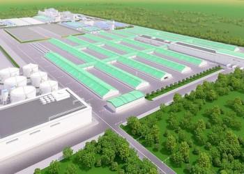 Строительство животноводческого комплекса мощностью 45 тыс т мяса в год начато в Кемеровской области