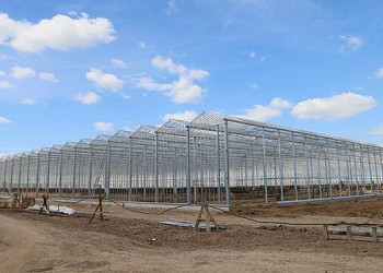 В Каширском районе Московской области ведется строительство крупного тепличного комплекса