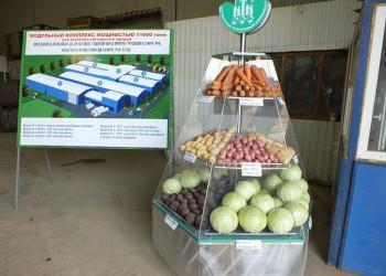 В Смоленской области реализуется масштабный проект по строительству модульных картофелехранилищ