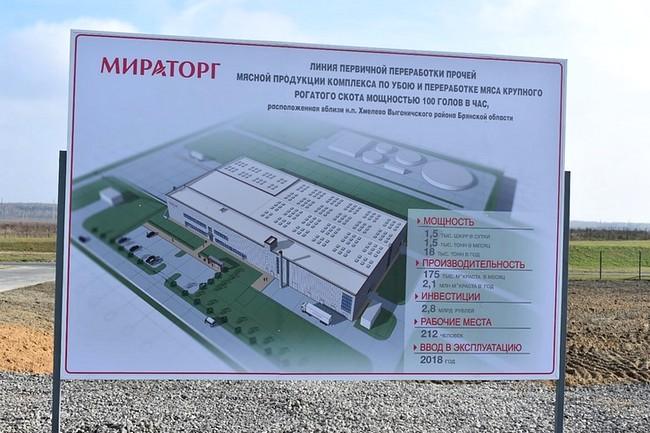 строительство крупного кожевенного завода