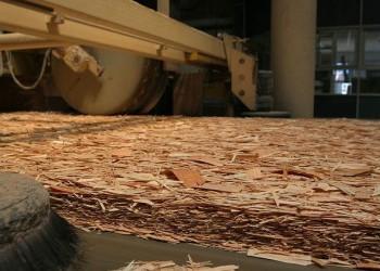 Запущено первое в России производство ориентированно-стружечной плиты