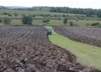 Более 30000 га брошенных нижегородских земель ввели в оборот за год
