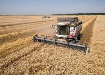 Крым экспортировал 600 тысяч тонн пшеницы за рубеж