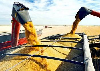 Первая за 8 лет партия российской пшеницы доставлена в Бразилию