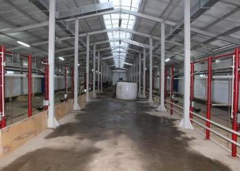 В Республике Коми открыты 2 молочные фермы
