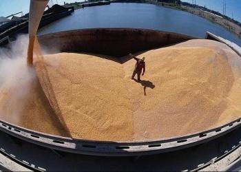 Экспорт зерна из России в июле вырос на 79%
