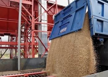 В Волгоградской области открыли зерноочистительный комплекс