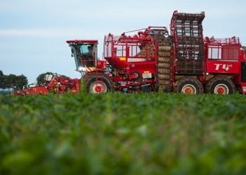 Россия почти отказалась от импортного сахара