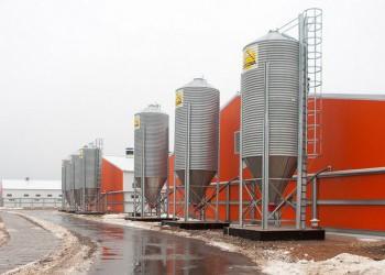 В Псковской области открыли крупнейший в России селекционно-генетический центр