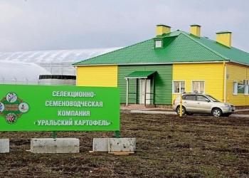 В Свердловской области начал работу селекционно-семеноводческий центр «Уральский картофель»