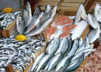 Производство рыбной продукции в России выросло на 3,7% - до 3,8 млн тонн