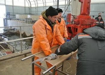 В Смоленской области открылся комплекс по выращиванию рыбы осетровых пород
