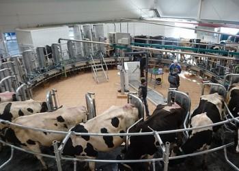 В Кировской области введена в эксплуатацию молочная карусель