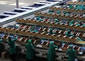 В Ингушетии открыта первая очередь оптово-распределительного центра