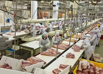 В России за 17 лет производство мясной продукции выросло в 6 раз