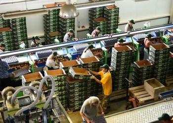 В Краснодарском крае открылось плодохранилище мощностью 6800 тонн