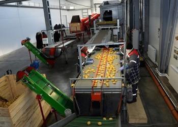В Омской области запущены крупное картофелехранилище и животноводческий комплекс на 520 коров