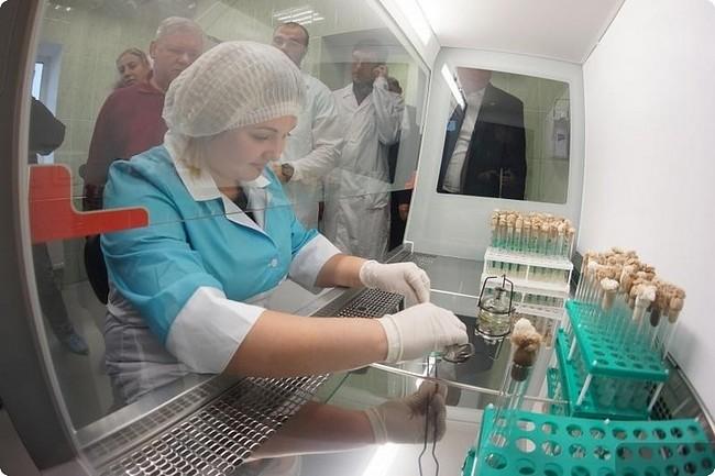 селекционно-семеноводческий центр «Уральский картофель»